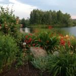 Landscaping & Garden - A lovely garden in South Village
